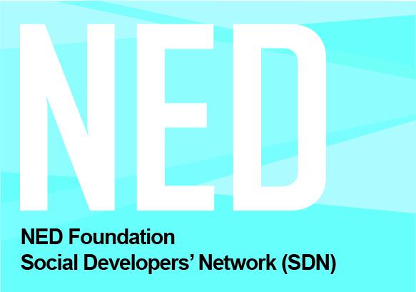 NED Foundation Logo